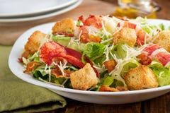 Hummer Caesar Salad Arkivfoton