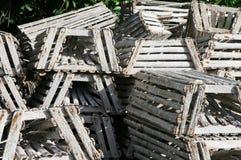Hummer-Fallen lizenzfreies stockbild