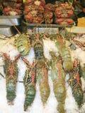 Hummer i marknad Arkivbild