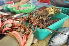 Hummer im traditionellen Fischmarkt Stockbild