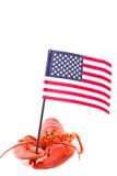 Hummer mit amerikanischer Flagge Stockfotos