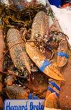 Hummer på fiskmarknaden arkivbilder