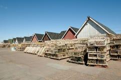 Hummer schließt - Prinz Edward Island - Kanada ein stockbilder