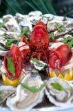 Hummer und Austern, frische Meeresfrüchte Stockfotos
