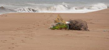 Hummerfällor på kust Royaltyfri Foto