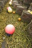 Hummerkrukor och förbunden utrustning Royaltyfri Foto