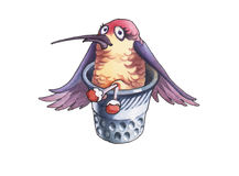 Humming-bird_3 Stockfotografie