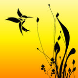 Humming bird and flower. Silhouette of the humming birds and flowers Stock Photos