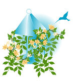 Humming Bird and Flowers. With gazebo style planter Stock Image