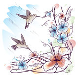 Humming-birds and tropical flowers. On a sky background Royalty Free Stock Photography
