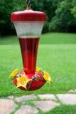 hummingbird фидера Стоковая Фотография
