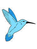 hummingbird цветка Стоковое Фото