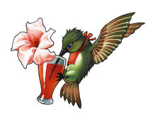 Hummingbird_1 Lizenzfreie Stockfotos
