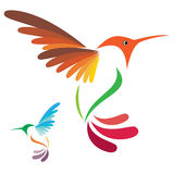 Hummingbird. Isolated abstract humming bird in white background Royalty Free Stock Photography