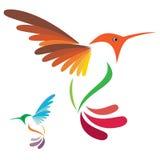 Hummingbird royalty free illustration