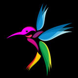 Hummingbird. Vibrant colors on a black background Royalty Free Stock Photo