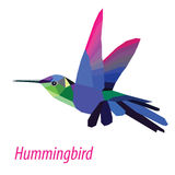 hummingbird Стоковое Изображение