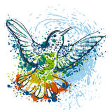 Hummingbird with abstract splashes in watercolor style. Royalty Free Stock Photos