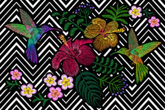 Hummingbird around flower plumeria hibiscus exotic tropical summer blossom. Embroidery fashion patch decoration textile. Print black white stripe geometric Royalty Free Stock Images