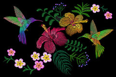 Hummingbird around flower plumeria hibiscus exotic tropical summer blossom. Embroidery fashion patch decoration textile. Print black background template art Stock Photo