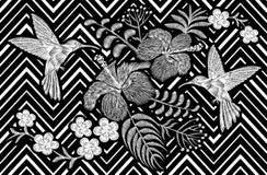 Hummingbird around flower plumeria hibiscus Frangipani exotic tropical summer blossom. Embroidery fashion patch. Decoration textile print black white stripe Stock Images