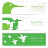 Hummingbird banners Stock Photography