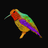 Hummingbird with colorful glossy plumage. Modern pop art style. Royalty Free Stock Images