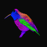 Hummingbird with colorful glossy plumage. Modern pop art style. Stock Images