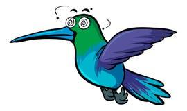 Hummingbird with dizzy face Royalty Free Stock Photo