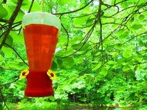 Hummingbird dozownik zdjęcie stock