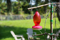 Hummingbird feeder Royalty Free Stock Photo
