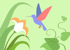 Hummingbird flower habitat flat cartoon vector wild animal bird. Hummingbird flower natural habitat background flat design cartoon vector wild animals birds Royalty Free Stock Image