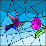 Hummingbird on a flower stained glass Royalty Free Stock Images