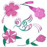 Hummingbird flower vector Exotic flowers and bird Hibiscus flower Hibiscus Hawaii Tropical bird. Little bird flying Colibri bird silhouette Tattoo bird Hawaii Royalty Free Stock Photography