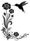 Hummingbird, flowers. Abstract flowers with hummingbird, black
