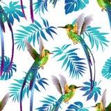 Hummingbird i Tropikalny kwiatu tło deseniowy bezszwowy wektor Fotografia Stock