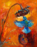Hummingbird. Original oil painting of hummingbird or kolibri and sunflower  on canvas.Rich golden Sunset.Modern Impressionism Royalty Free Stock Photo