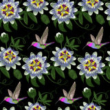 Hummingbird and Passiflora Seamless Pattern Stock Images