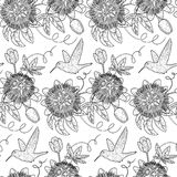 Hummingbird and Passiflora Seamless Pattern Royalty Free Stock Photography