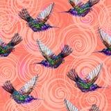 Hummingbird seamless pattern. Stock Photo