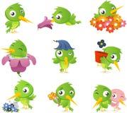 Hummingbird set ilustracji