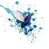 Hummingbird watercolor image Stock Images