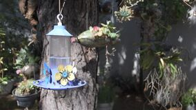 Hummingbird waterer with some black bees