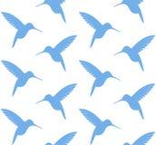 hummingbird wzór Obraz Royalty Free