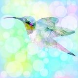 Hummingbird z bokeh skutkiem wektor 2 Fotografia Stock