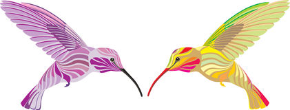 Hummingbirds. The humming-bird isolated on a white background royalty free illustration