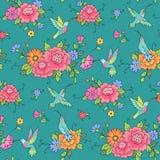 Hummingbirds Stock Photos