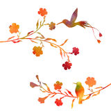 Hummingbirds and flowers silhouettes Royalty Free Stock Photos