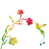 Hummingbirds and flowers silhouettes Royalty Free Stock Photo
