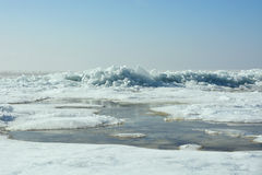 Hummock on the frozen sea shore Stock Photography